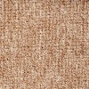 Zorba Beige Carpet