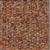 Barley Precision II Carpet Tile
