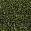 Lush Lawns Plush