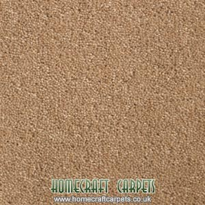 Suede Coloured Carpet
