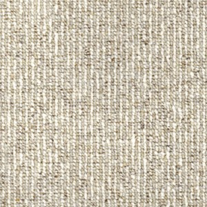 Taupe Coloured Carpet