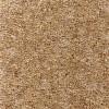 Antelope Durham Twist Carpet