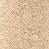 Daytona - Durham Twist Carpet, 80/20 Wool Twist