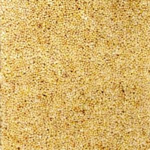 Haystack Carpet - Durham Twist