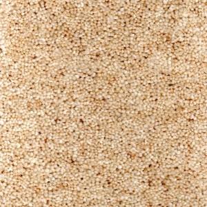 Jersey Carpet - Durham Twist