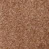 Latte Coloured Carpet