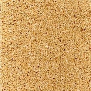 Sand Carpet - Durham Twist