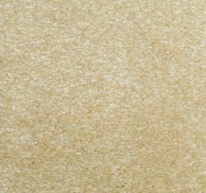 Foxwood Carpet