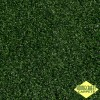 Golf (Green) Artificial Grass