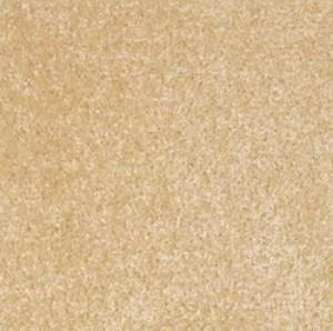 Dublin Heather Beige Carpet