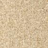 Berber Style Dublin Beige Carpet