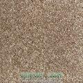 Tuftex Pebble Beige Carpet