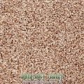 Tuftex Sable Carpet