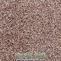 Tuftex Taupe Carpet