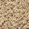 Sandstone Neptune Carpet Tile