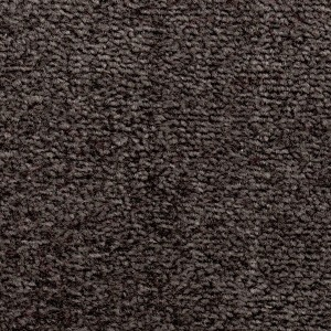 Baltic Grey Coloured Carpet