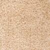 Beige Dublin Twist Carpet