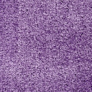Lila (Purple) Carpet